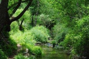 Senda fluvial del río Linares