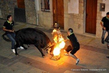 Toros embolados y Verbenas de las Fiestas 2014