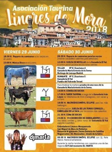 Fiesta de la Asociación Taurina 2018