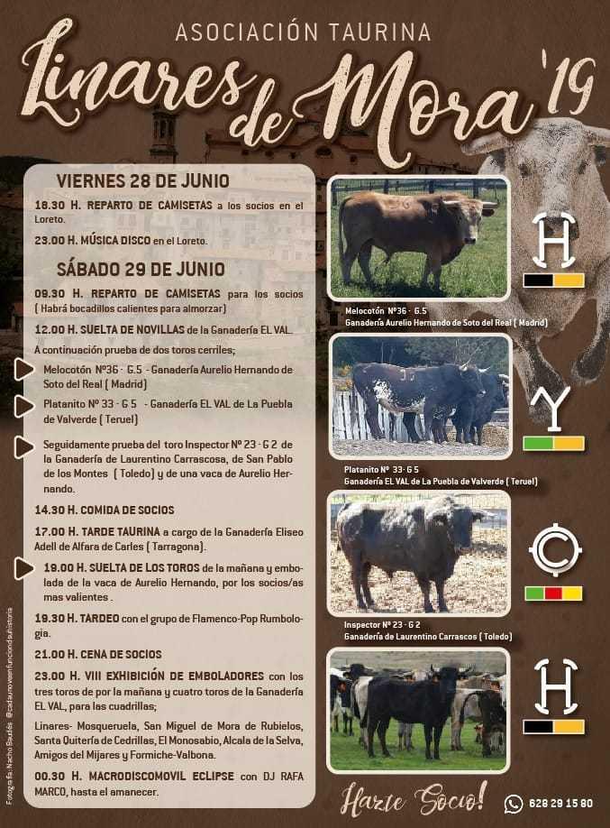 fiesta-taurina-2019